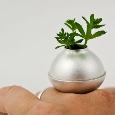 En silverring som är en vas, en knopp, en linje som är ringskenan, eller rötter.